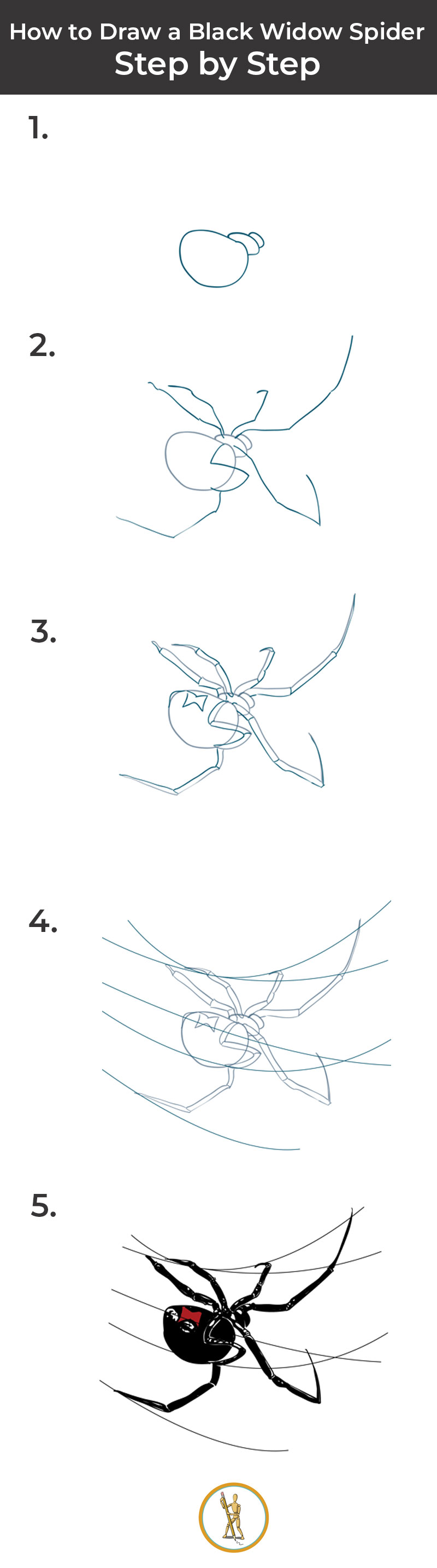 How To Draw A Black Widow Spider Step By Step