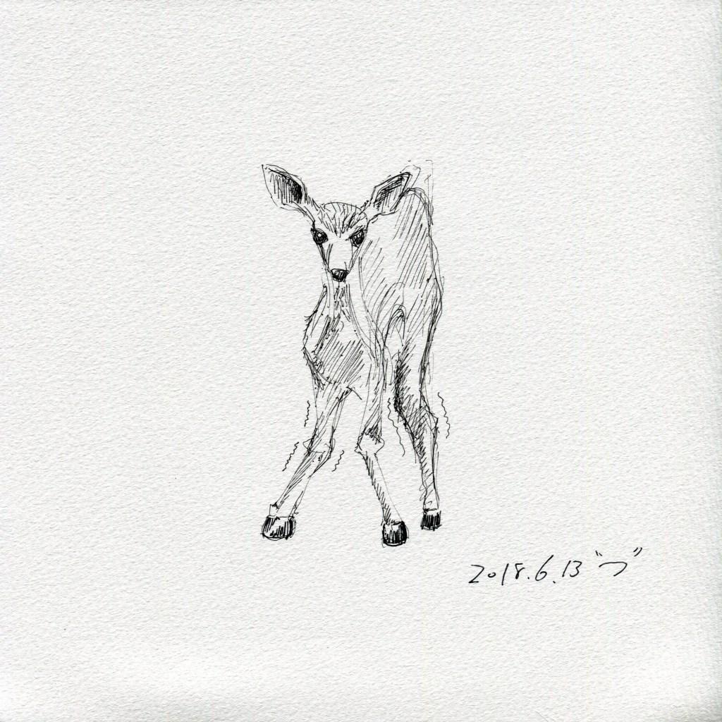 シェルチェア_小鹿