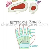 Internal Med | Sketchy Medicine