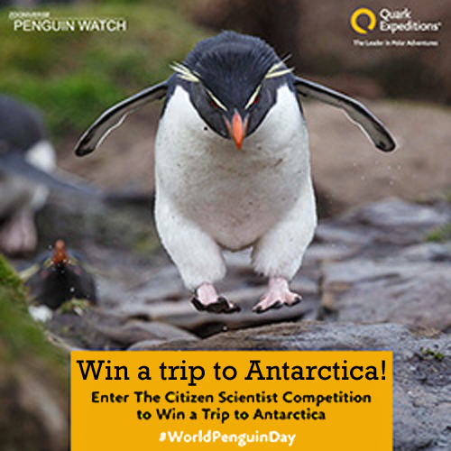 Win a trip to Antarctica