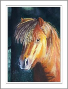 Sunset horse portrait