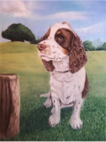 Dog Pastel Portrait