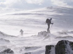 Cairngorm Plateau, Scotland