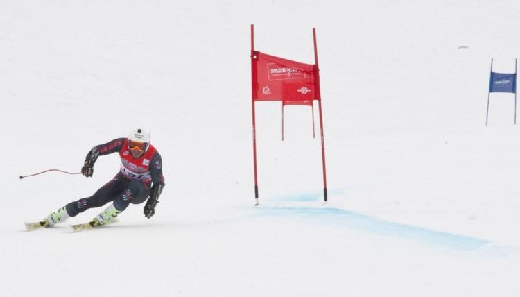 Skier's Edge Ski Racer 1