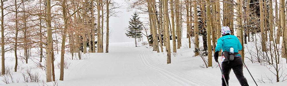 Back Tracks – XC Backcountry Trails Christmas week
