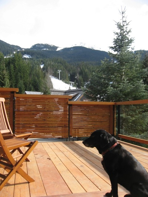 5 Bedroom Snowridge Whistler Ski In Ski Out (3)