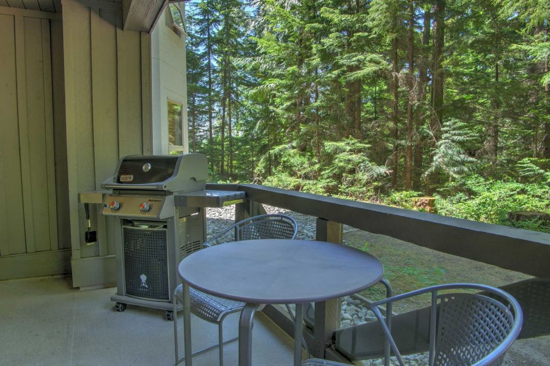 Aspens 1 Bedroom Unit 113 BBQ