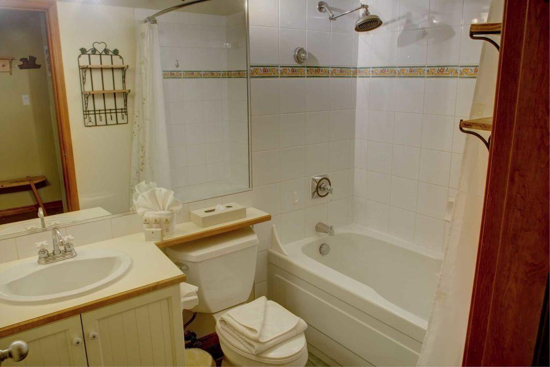 Aspens 1 Bedroom Unit 209 BATH