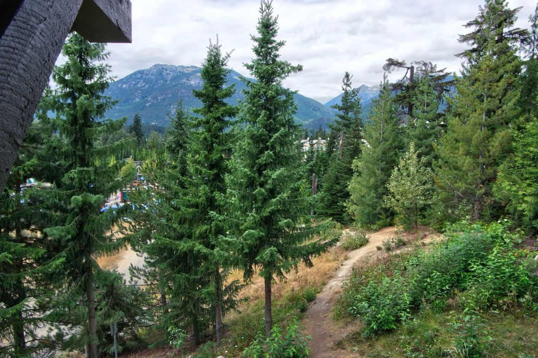 Aspens 1 Bedroom Unit 209 VIEW