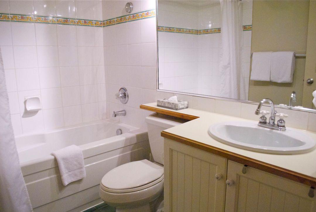 Aspens 1 Bedroom Unit 221 BATH