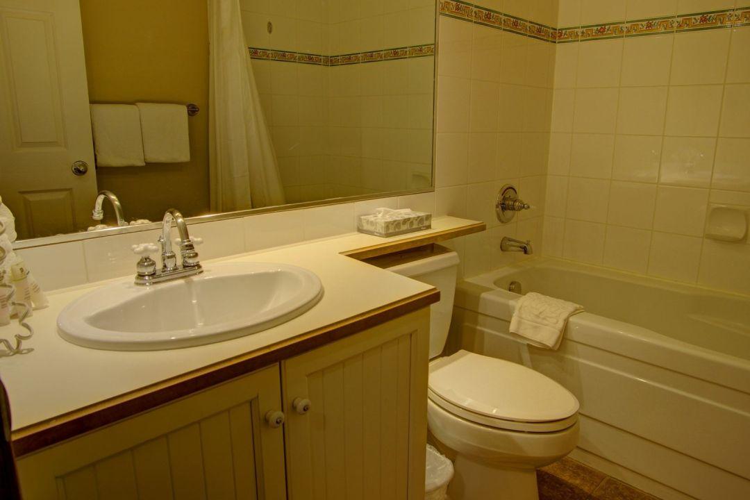 Aspens 1 Bedroom Unit 238 BATH