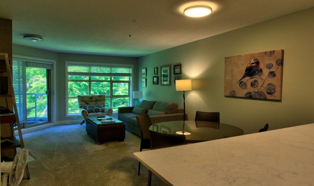 Aspens 1 Bedroom Unit 417 LR2
