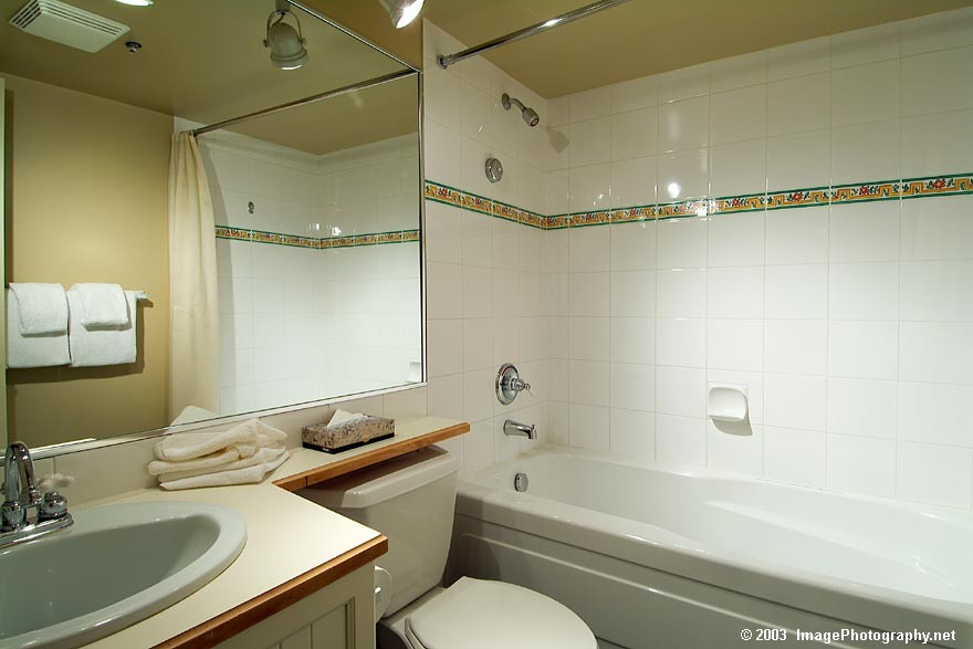 Aspens 1 Bedroom Unit 438 BATH