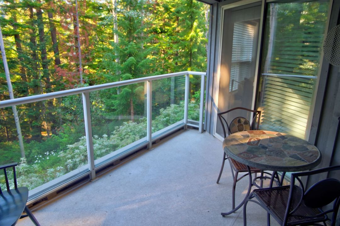 Aspens 2 Bedroom Unit 220 VIEW