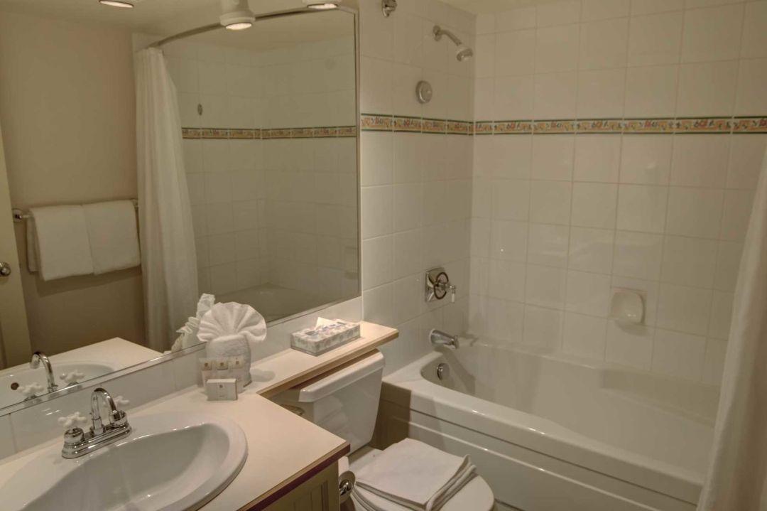 Aspens 1 Bedroom Unit 315 BATH