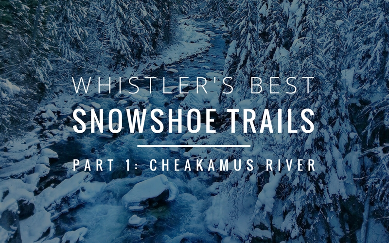 Whistler's Best Snowshoe Trails | Part One: Cheakamus River