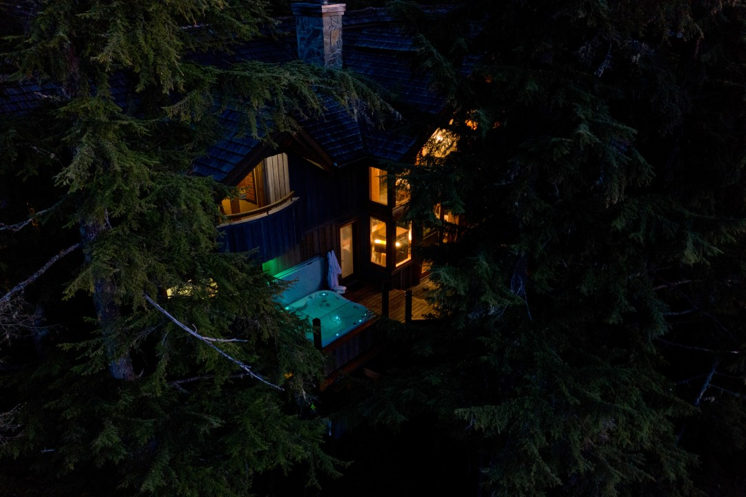 Whistler Luxury Ski In Ski Out 5 Bedroom Chalet Home (5)