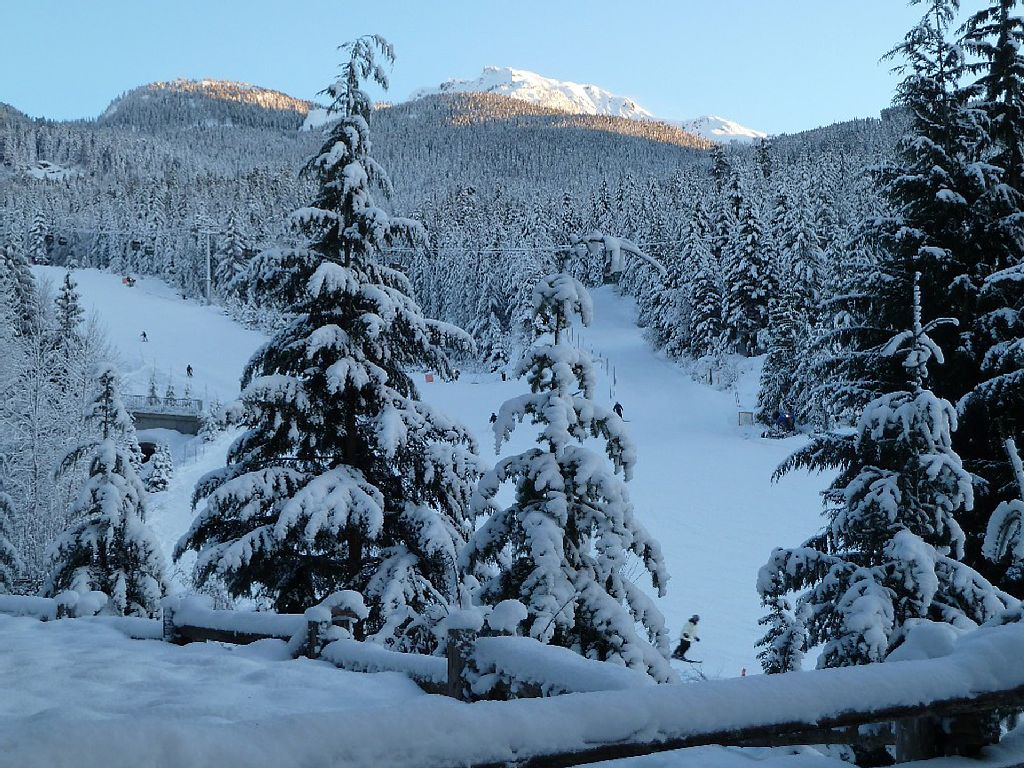 Whistler Luxury Ski In Ski Out Rental Home (6)