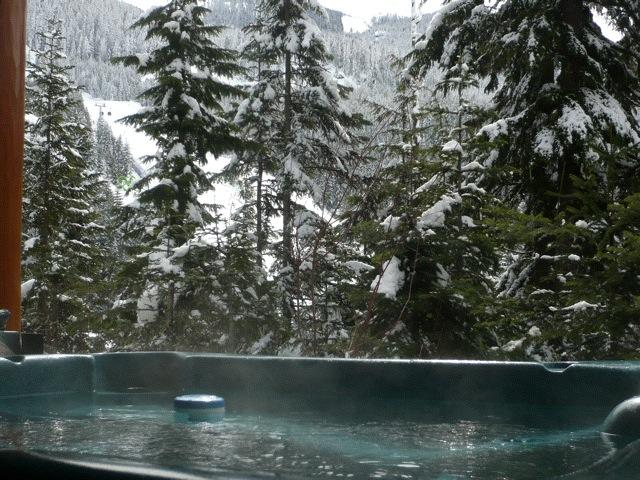 taluswood_heights_hot_tub_view