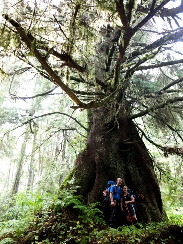 Big old tree with cute young couple