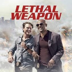 checkatrade lethal weapon