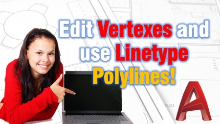 Edit vertexes and use Linetype