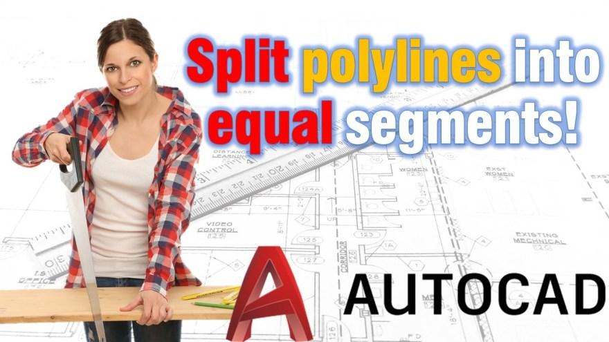 Split polylines into equal segments! AutoCAD Tips