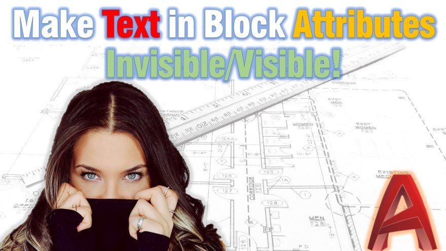 Make Text in Block Attributes Invisible/Visible! AutoCAD Tips