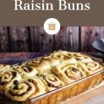 Mashed Potato Raisin Buns
