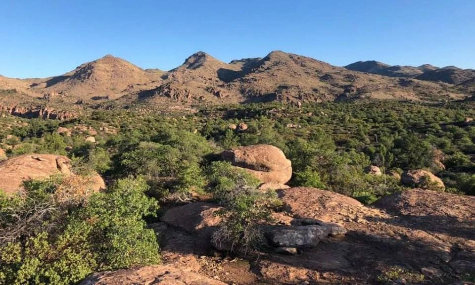 Oak-Flat-of-south-eastern-Arizona