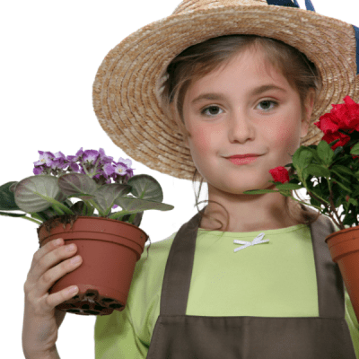 5 Tips for Indoor Container Gardening