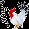 鶏胸肉を食べれば即効美肌?!鶏胸肉で疲れたお肌にパワーをチャージ!!
