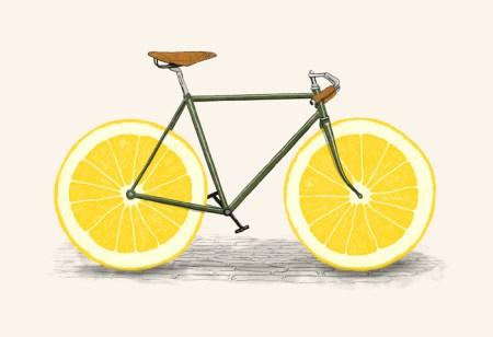 zest bike print