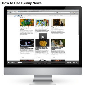 How to Use Skinny News on Art