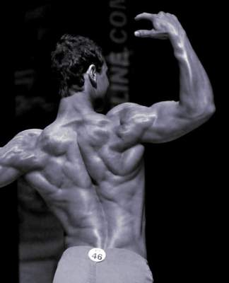 Chris Heskett back muscles