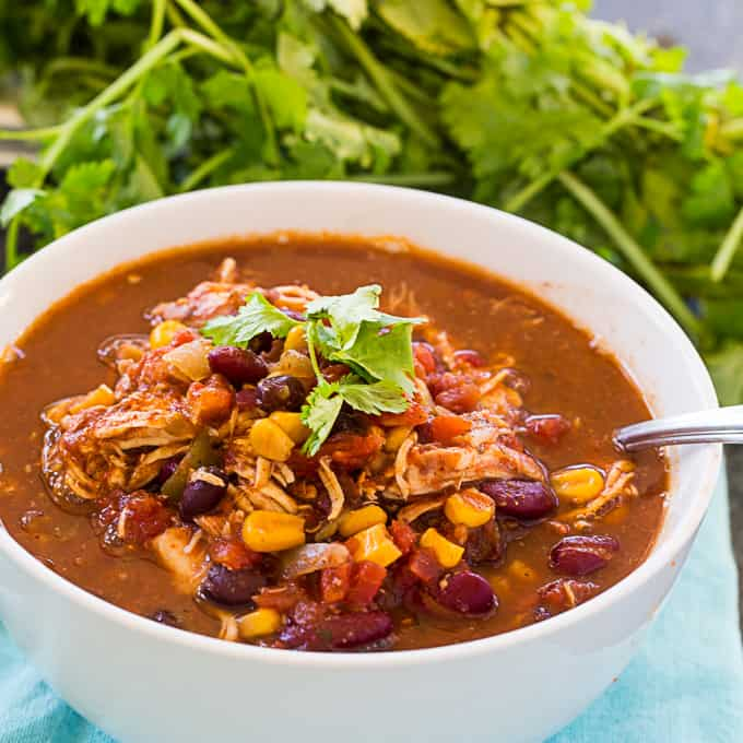 Healthy Crock Pot Chicken Chili - Skinny Southern Recipes