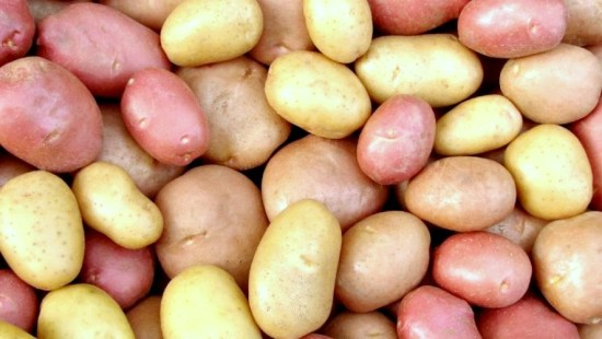 Lots of Potatoes