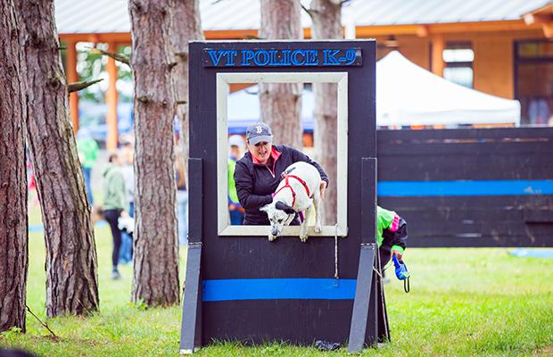 Fun Runs with Dogs: Green Mountain Irondog