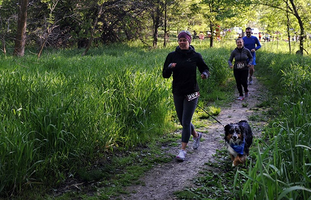 Fun Runs with Dogs: Tails and Trails