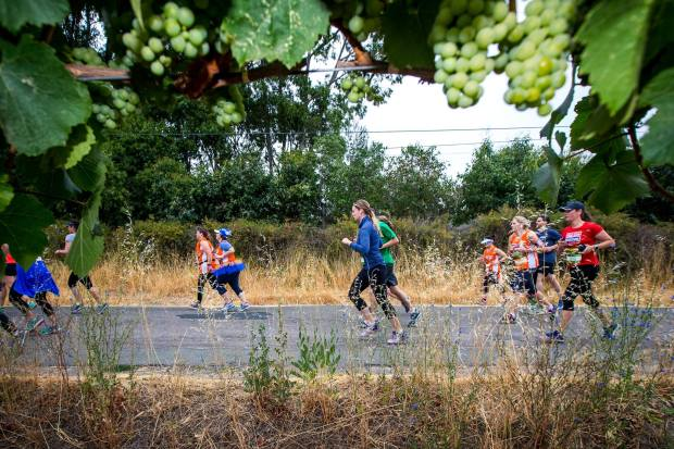 The 50 Best Half-Marathons in the U.S. - Napa to Sonoma Wine Country Half Marathon in Sonoma, California