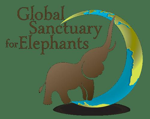 Global Sanctuary for Elephants