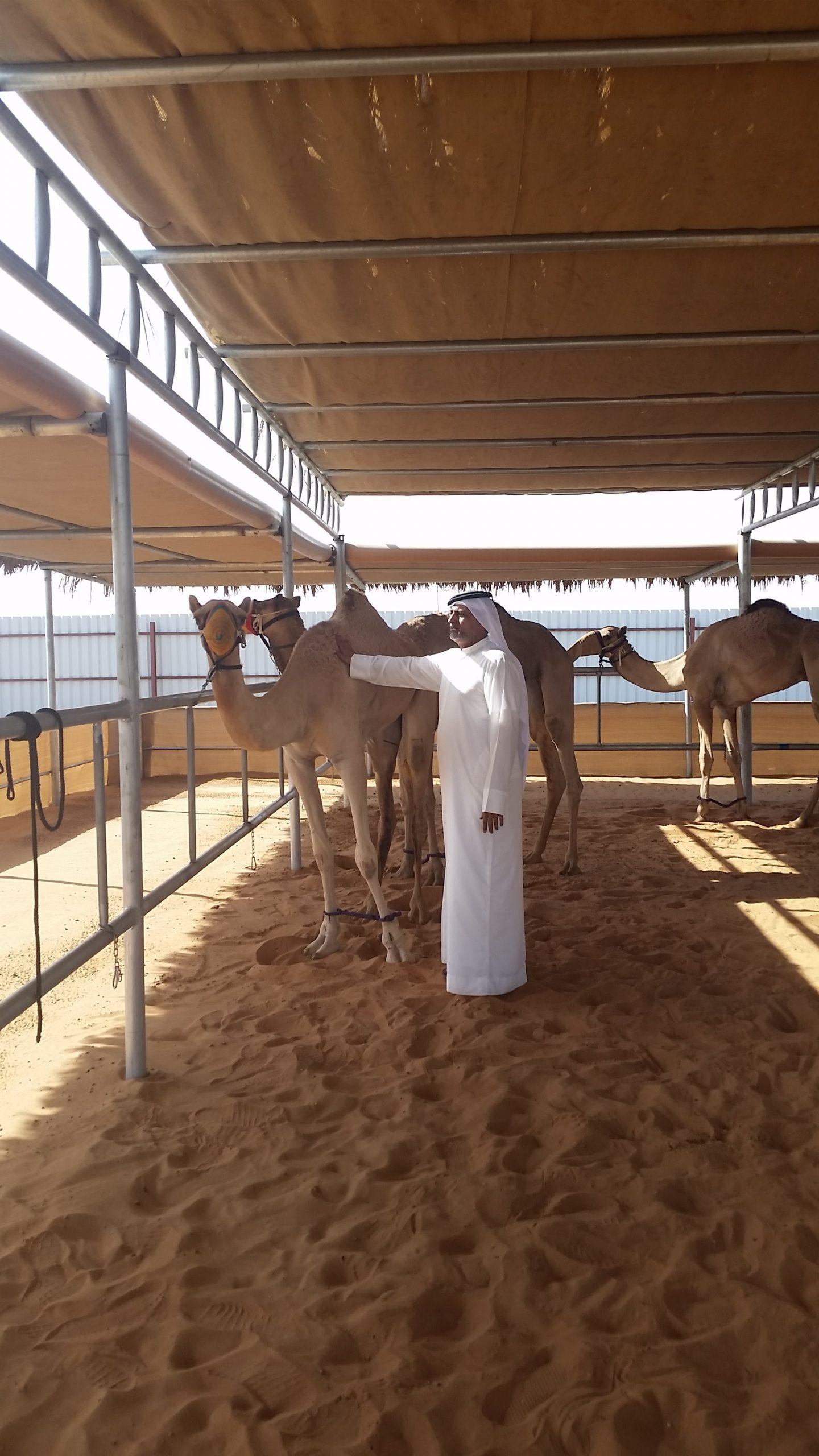 Skins IR- On location Dubai