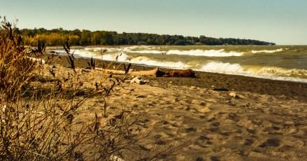 2015_10_15_Headlands Dunes_060