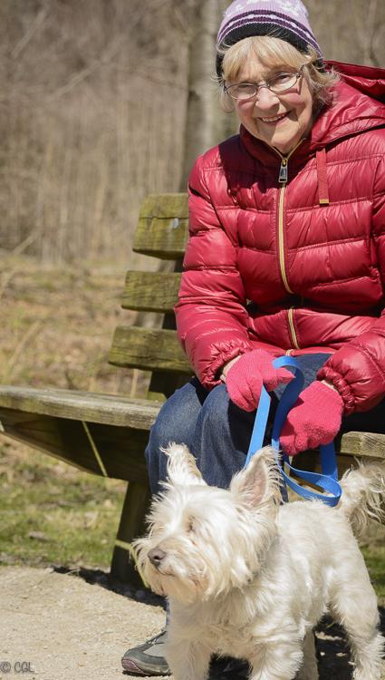 Spring dog walker