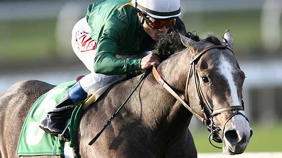 The Pamplemousse faces Pioneerof The Nile for Santa Anita Derby Dominance on Saturday.  Go Fruit!