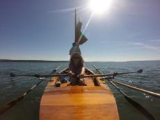 Rowing while Kyle sets sail