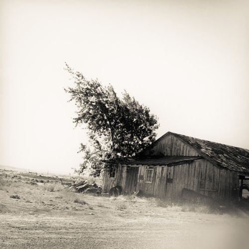 Abandoned Barn Near Benge - © Skip Smith