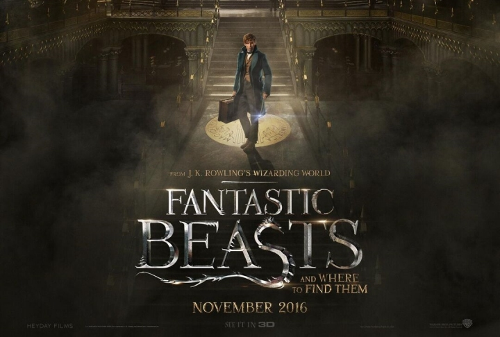 """Things That Excite Me About The Upcoming """"Fantastic Beasts"""" Movie   Skip The Flip"""