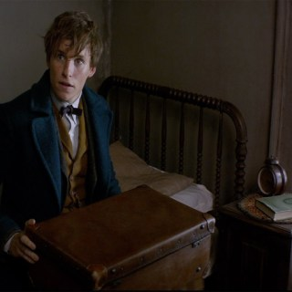 "Things That Excite Me About The Upcoming ""Fantastic Beasts"" Movie 