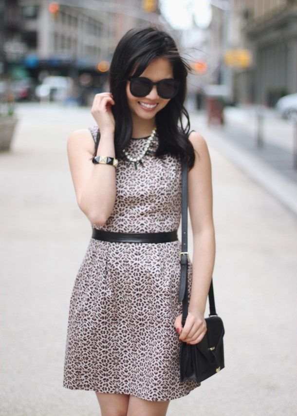 Leopard Dress with Leather Trim